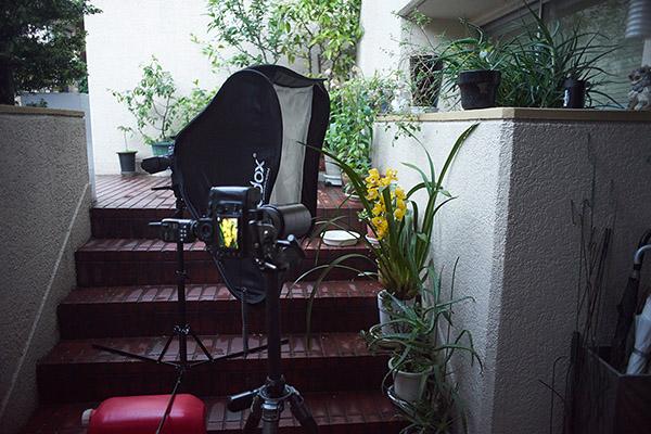 SoftBox70cmpics_03