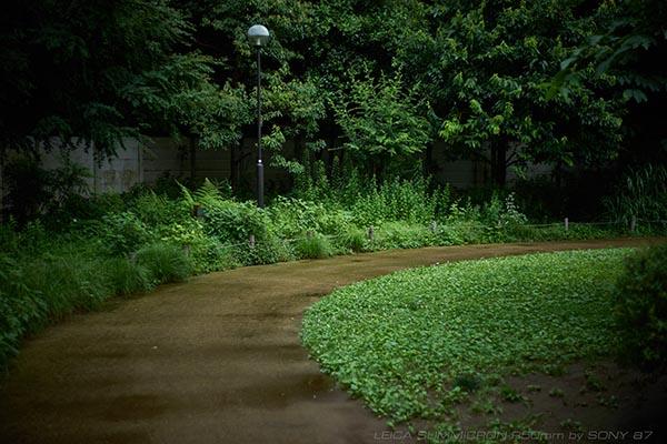 donten-photo_02