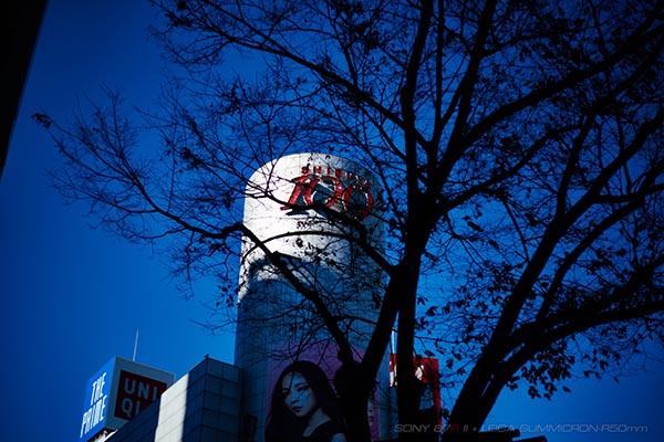 Tokyo_Shi-wasu_SUMMICRON2015_005