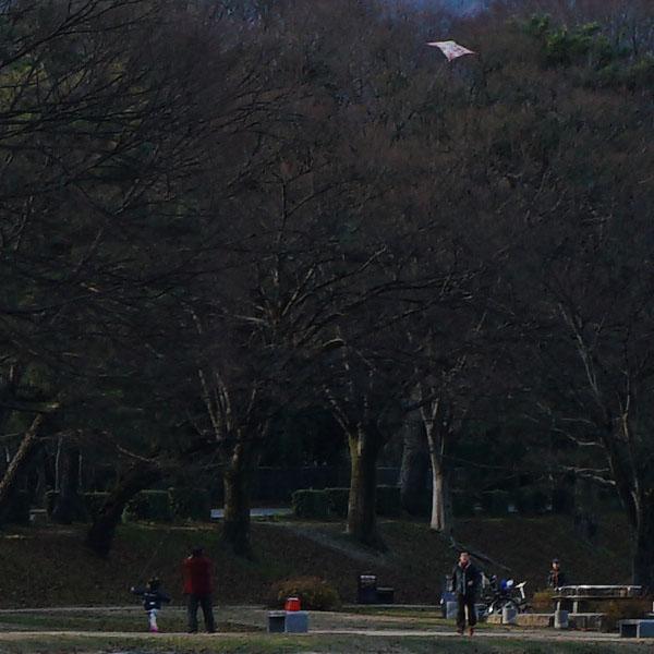 kamogawa017_600px